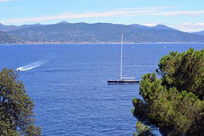 Park Portofino Italy Photograph - Beautiful Natural Landscape With Threes And The Sea In Portofino, Italy by Oana Unciuleanu