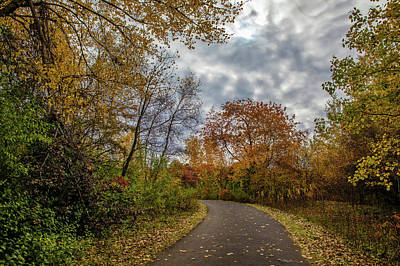 Photograph - Beauty Of Autumn by Lilia D