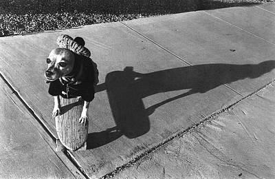 Vintage Movie Stars - Beret Chihuahua Skateboard Tucson Arizona 1972 by David Lee Guss