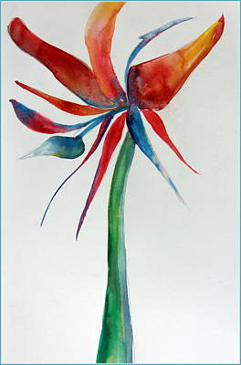 Tropical Drawing - Bird Of Paradise by Mindy Newman