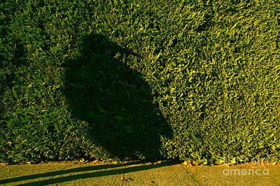 Photograph - Bird Woman Silhouetted by Jim Corwin