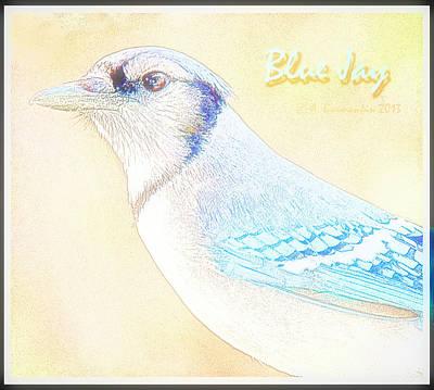 Comedian Drawings - Blue Jay by A Macarthur Gurmankin