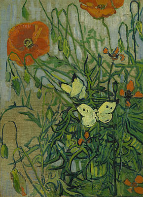 Netherlands Painting - Butterflies And Poppies by Vincent van Gogh