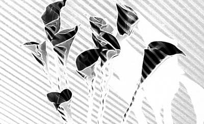 Calla Lilies Art Print by Gary at TopPhotosI