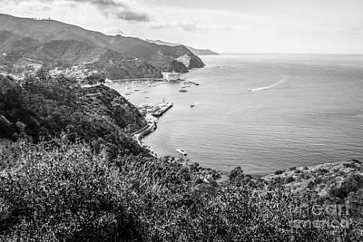 Catalina Island Photograph - Catalina Island Avalon Bay Black And White Photo by Paul Velgos