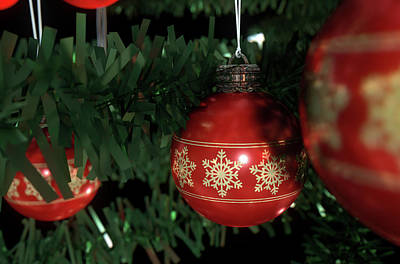 Trimming Digital Art - Christmas Baubels In A Tree by Allan Swart