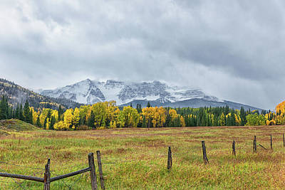 Photograph - Colorado Fall Foliage by Victor Culpepper
