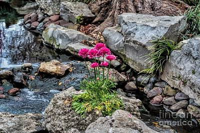 Art Print featuring the photograph Dallas Arboretum by Diana Mary Sharpton