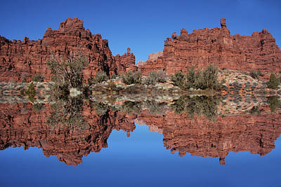Photograph - Desert Reflections by Mark Smith