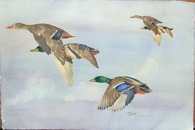 Painting - 5 Ducks by Diane Ziemski