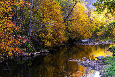 Fall Color Gauley River Headwaters Art Print