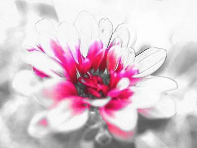 Digital Art - Flower by Kumiko Izumi