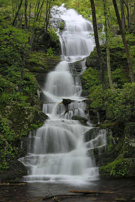 Forest Waterfall Art Print by Stephen  Vecchiotti