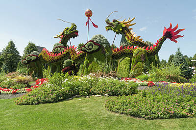 Gatineau Photograph - From Beijing Is  Blessing Of The Good Omen Dragons. by Bob Corson