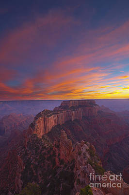 Photograph - Grand Canyon by Shishir Sathe