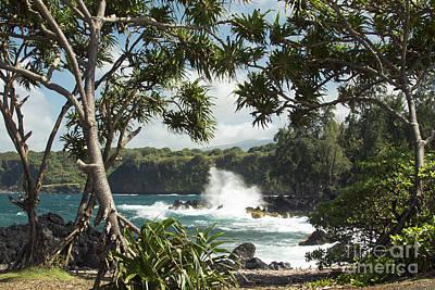 Keanae Maui Hawaii Art Print by Sharon Mau