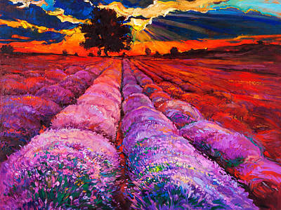 Aromatherapy Oils Royalty Free Images - Lavender fields by Ivailo Nikolov Royalty-Free Image by Boyan Dimitrov