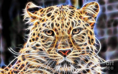 Leopard Collection Art Print by Marvin Blaine
