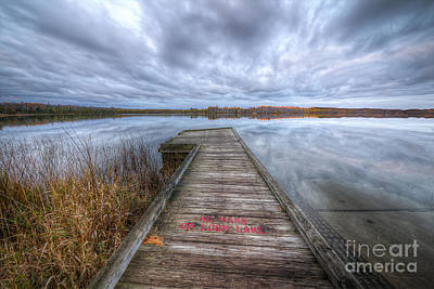 Loons Wall Art - Photograph - Loon Lake by Twenty Two North Photography