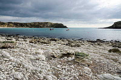 Dorset Photograph - Lulworth Cove by Nichola Denny