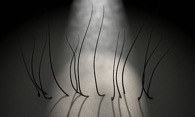 Microscopic Hair Fibers Art Print