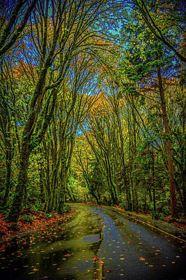 Photograph - 5 Mile Drive by Jason Brooks