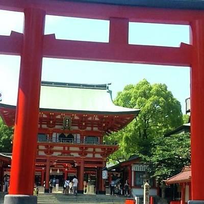 Photograph - 生田神社❇  #神社 #兵庫県 by Ayako Shibata