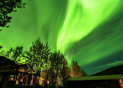 Northern Lights, Aurora Borealis At Kantishna Lodge In Denali National Park Art Print