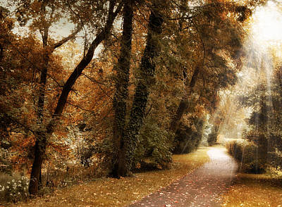 Country Lanes Digital Art - October Trail by Jessica Jenney