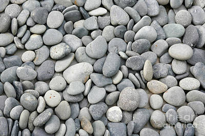 Zen Rocks Photograph - Pebbles by American School