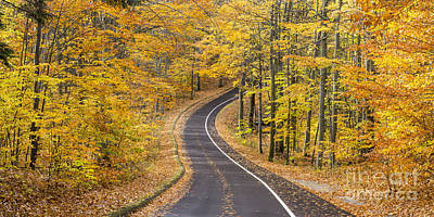 Scenic Drive Photograph - Pierce Stocking Drive In Fall by Twenty Two North Photography