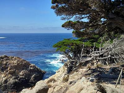 Photograph - Point Lobos Coastline by Richard Yates