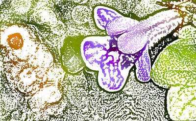 Photograph - Purple Flower by Jouko Mikkola
