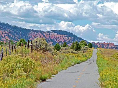 Photograph - Red Canyon Biking And Hiking Trail In Dixie National Forest, Utah  by Ruth Hager