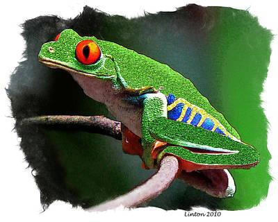 Rain Forest Digital Art - Red-eyed Leaf Frog by Larry Linton
