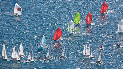 Photograph - Regatta Spinnakers by Steven Lapkin