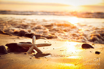 Shine Photograph - Starfish On The Beach At Sunset by Michal Bednarek