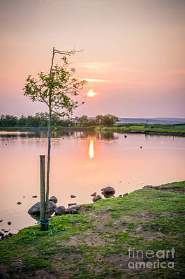 Photograph - Sunrise By Redcar Tarn by Mariusz Talarek