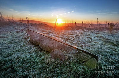 Photograph - Sunrise by Mariusz Talarek