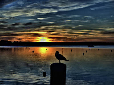 Photograph - Sunrise Onset Pier by Bruce Gannon