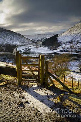 Yorkshire Photograph - Swaledale by Nichola Denny