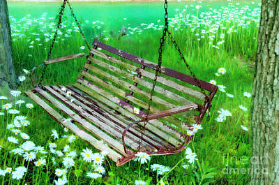 Photograph - Swing In The Daisies by David Arment