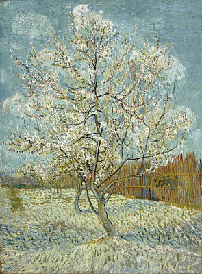 Photograph - The Pink Peach Tree by Vincent Van Gogh