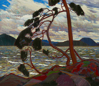 Painting - The West Wind by Tom Thomson