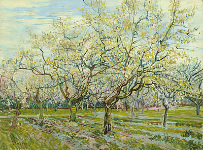 Vincent Painting - The White Orchard by Vincent van Gogh