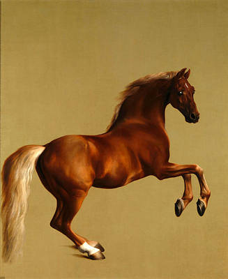 Red Painting - Whistlejacket by MotionAge Designs