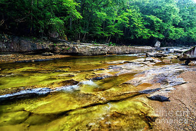 Photograph - Williams River After The Flood  by Thomas R Fletcher