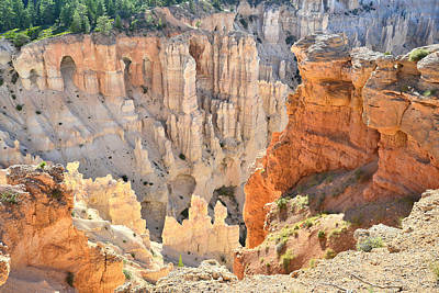 Photograph - Windows Of Bryce Point by Ray Mathis