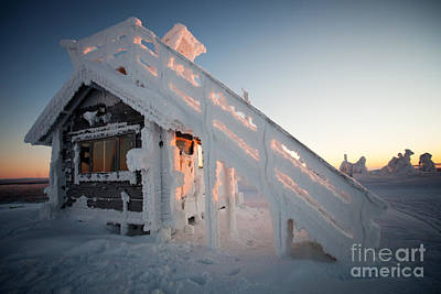 Israeli Flag - Winter in Lapland Finland by Kati Finell