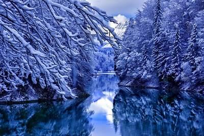 Nature Digital Art - Winter by Maye Loeser
